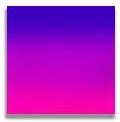 Purple/Pink Fade